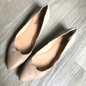 belle sigerson morrison pointed toe flats